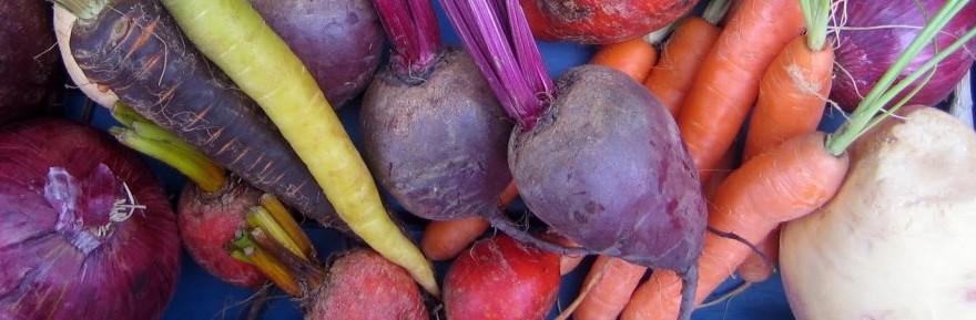 Årstidens Grøntsager