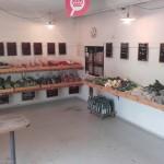 noerbyes-groentsager
