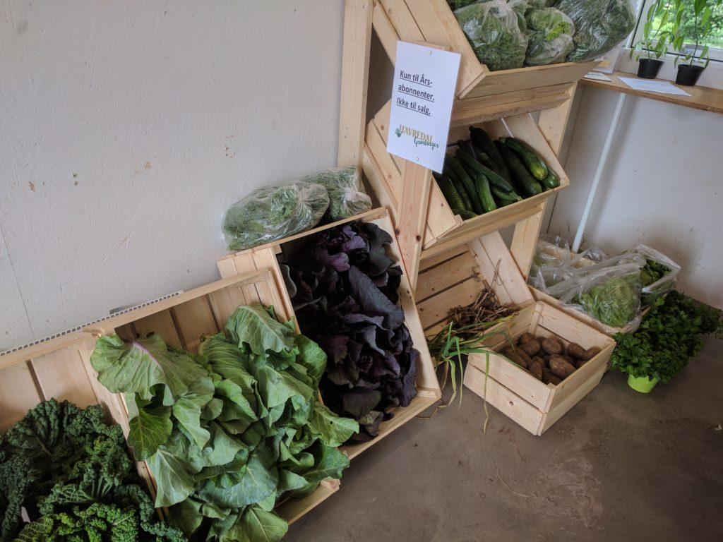 Havredal Grøntsager